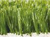 邯鄲市銘邦供應足球場仿真草坪地毯草坪墻