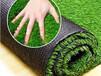 張家界市銘邦供應幼兒園仿真草坪地毯草坪墻