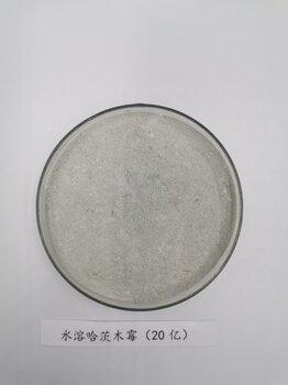 哈茨木霉菌劑哈茨木霉溶劑哈茨木霉的用量促生哈茨木霉菌劑