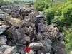 廣東工程造景大英石出售英德石場供應別墅庭院假山石
