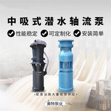 軸流泵_大排量軸流泵_低揚程軸流泵_無堵塞軸流泵圖片