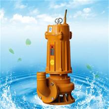 廣東WQN離心式潛水排污泵類型圖片