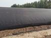 河南納米膜好氧堆肥發酵機-諸城匯澤