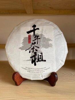 大雪山(勐库古树茶)
