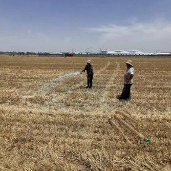 保定污染土壤凤凰联盟登录复凤凰联盟登录程微生物固化剂