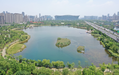 合肥城市河道治理工程物化凝聚复合剂