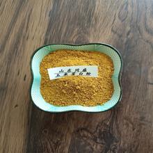 好原料玉米蛋白粉黃色顆粒狀豬牛羊飼料添加劑同盛出廠圖片