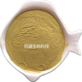 食品添加玉米漿干粉氨基酸粉水溶植物蛋白山東同盛