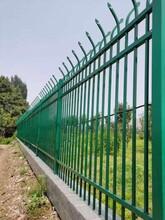 建筑工程院墻柵欄/鍍鋅鋼管欄桿/防護隔離欄桿/院子圍墻欄桿圖片