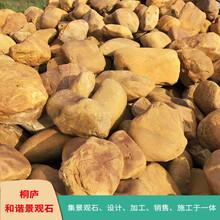 浙江園林風景石景觀石黃蠟石草坪點綴石奇石原石