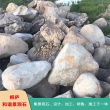 浙江園林景觀石天然鵝卵石水沖石草坪點綴石產地
