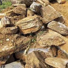 杭州園林風景石原石奇石點石千層石龜紋石