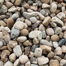 杭州天然景觀石基地產地園林鵝卵石水沖石鋪路石