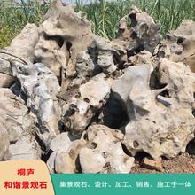 杭州天然景觀石太湖石假山石奇石產地
