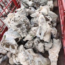 杭州天然太湖石窟窿石奇石假山石原石產地