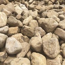 天然小黃石景墻石自然石鋪路石原石