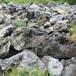 杭州園林風景石產地天然英石假山石自然石