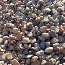 浙江园林风景石天然鹅卵石雨花石自然石铺路石图片