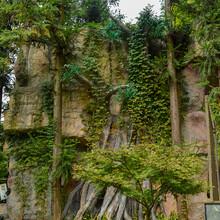 杭州园林景观石塑石假山人造假山假树图片