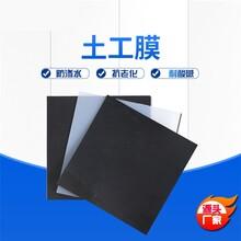 聚乙烯防滲膜HDPE土工膜耐腐蝕0.2-2.0mm看定做