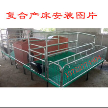 遼寧母豬分娩床養豬設備豬產床母豬分娩欄廠家尺寸圖片