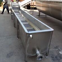 安徽阜陽鴿子清洗機鴿子洗污機圖片