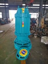 380V潛水渣漿泵渣漿泵渣漿泵廠家耐磨渣漿泵抽沙泵圖片