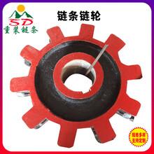 10齒傳動鏈輪廠家斗式提升機鏈條鏈輪45#鋼刮板機齒式鏈輪圖片