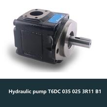 HydraulicpumpT6DC0350253R11B1克令吊液压泵图片