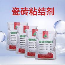 新县瓷砖胶优游平台注册官方主管网站用墙砖地砖粘合剂瓷砖背胶图片