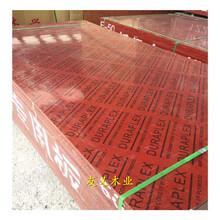 銅川竹木模板批發市場,廠家價格便宜圖片
