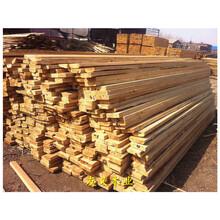 榆林工地木方加工廠,規格價格優圖片