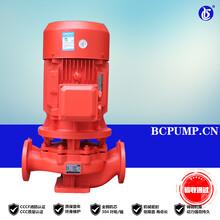 貝成排污泵,消防泵工作原理,深井消防泵安裝,自動柴油機消防泵圖片