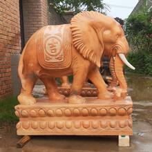 石雕大象廠家-供應石雕大象定制圖片