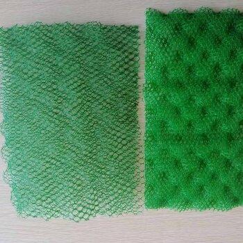 湖北三維網墊三維土工網墊三維植被網護坡EM3