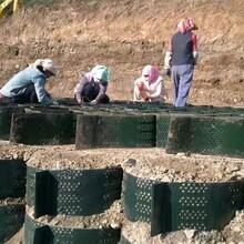 湖南生態護坡蜂巢約束系統土工格室壓紋打孔土工格室廠家75-600圖片