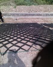 四川蜂巢約束系統土工格室HDPE土工格室河道治理150-800圖片
