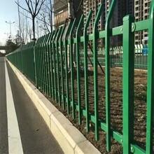 PVC塑鋼草坪護欄鋅鋼草坪欄桿市政綠化帶護欄護欄廠家圖片