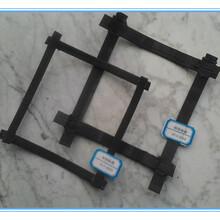 鋼塑土工格柵凸結點鋼塑土工格柵生產廠家批發價銷售圖片