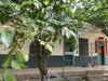 海南農場房子多套職工住房出售