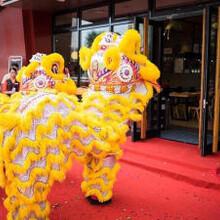 济南周年庆开业活动礼仪模特舞龙舞狮图片