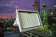 麗水市150W高天棚燈的用途