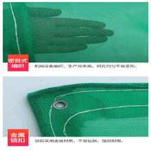 武漢東西湖凱美供應建設工程阻燃網/工程防護安全網8乘6米一片圖片