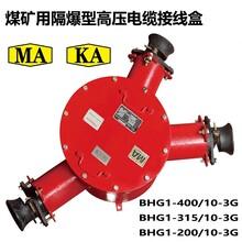 供應BHG2-400二通防爆高壓接線盒10kv圖片