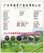 杭州特濃錫蘭CTC檸檬茶葉-招牌檸檬奶茶葉供應廠家