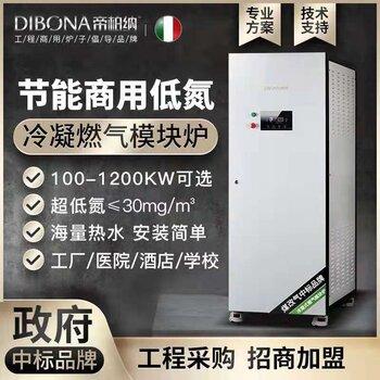 帝柏纳100KW燃气采暖模块炉冷凝模块锅炉热水炉天燃气模块涡炉