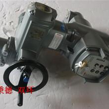 Auma執行器SQ05.2-F05-F07+控制器AM01.1圖片