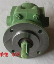 Steimel油泵SF2/10R图片