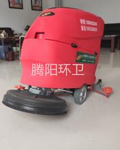 山东腾阳环卫TYXD-53电动手推式洗地机图片