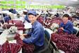 出國勞務/年薪2年80萬/男女不限/正規工作簽/勞務派遣出國高薪
